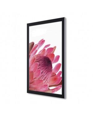 Premium LED Poster Display A1